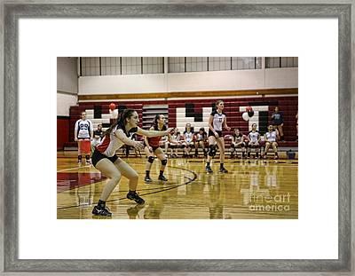 Sara Livecchi 12 Framed Print by Lee Dos Santos