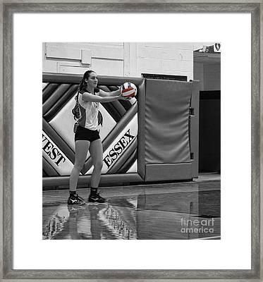 Sara Livecchi  Framed Print by Lee Dos Santos