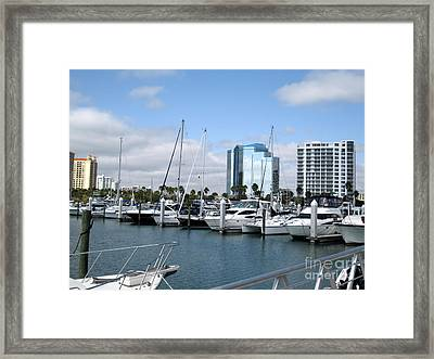 Framed Print featuring the photograph Sarasota Fl Usa by Oksana Semenchenko