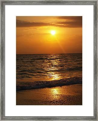 Sarasota Sunset Florida Framed Print by Athala Carole Bruckner