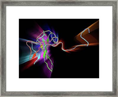Sars Virus Capsid Protein Framed Print