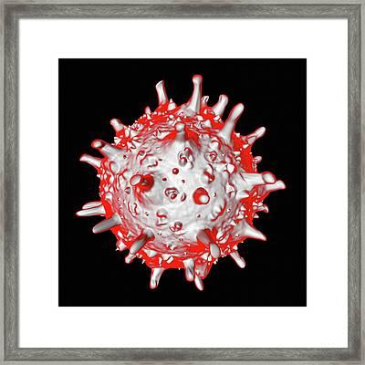 Sars Virus Framed Print by Mehau Kulyk