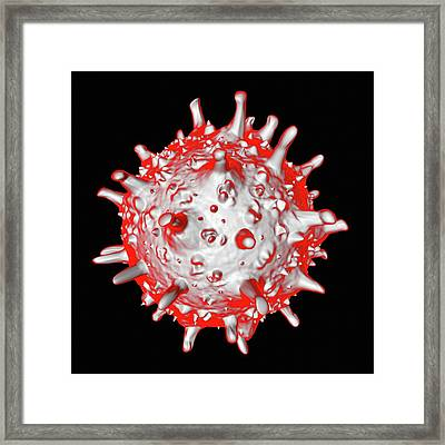 Sars Virus Framed Print