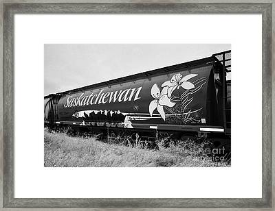 saskatchewan freight grain trucks on canadian pacific railway Saskatchewan Canada Framed Print by Joe Fox