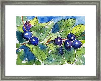 Saskatoon Berries Framed Print by Pat Katz