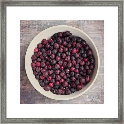 Saskatoon Berries Framed Print by Priska Wettstein