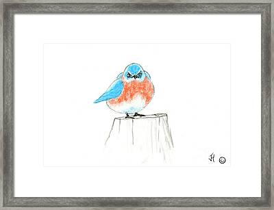 Sassy Little Guy Framed Print