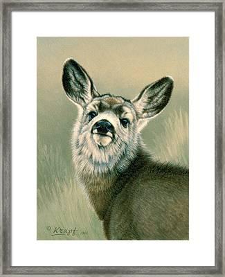 Sassy Look Framed Print by Paul Krapf