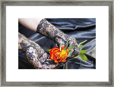 Satin Lace And Rose Framed Print
