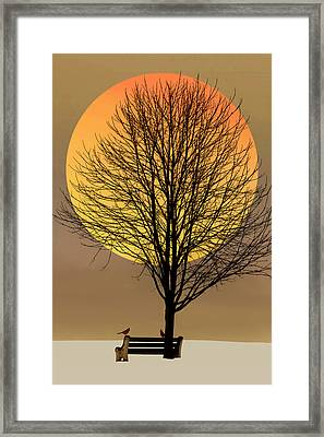 Saturday In The Park Framed Print by Tom York Images