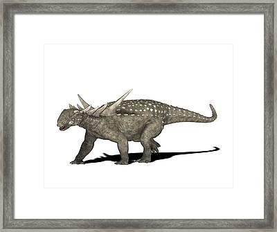 Sauropelta Dinosaur Framed Print by Friedrich Saurer