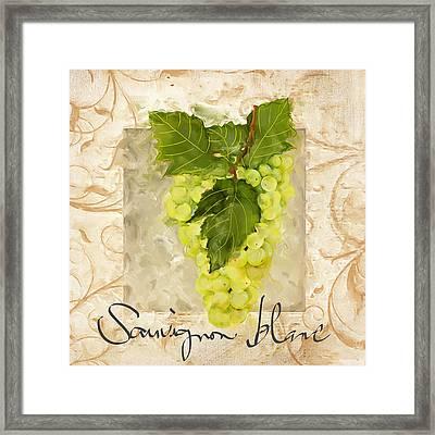 Sauvignon Blanc II Framed Print