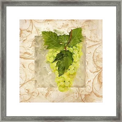 Sauvignon Blanc Framed Print