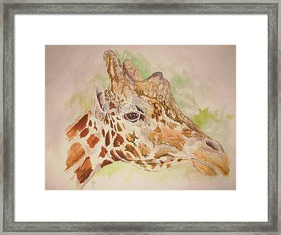 Savanna Giraffe Framed Print