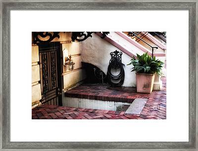 Savannah Design Framed Print by John Rizzuto