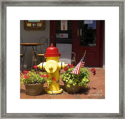 Savannah Fire Hydrant Framed Print by Sherry Dooley