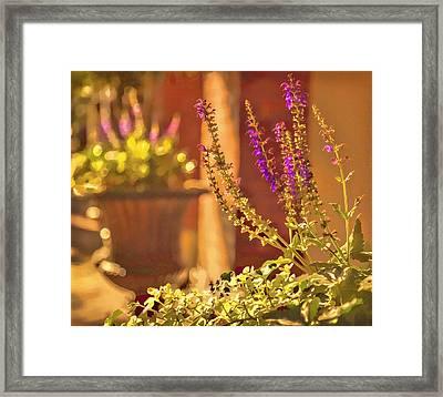 Savannah Floral Framed Print by Diana Powell
