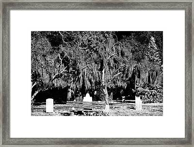 Savannah Resting Place Framed Print by John Rizzuto