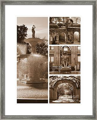 Savannah Scenes Collage In Sepia Framed Print by Carol Groenen