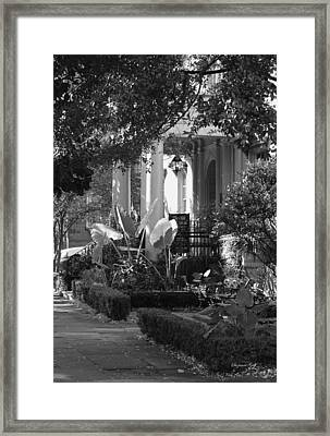 Savannah Scenic In Black And White Framed Print by Suzanne Gaff