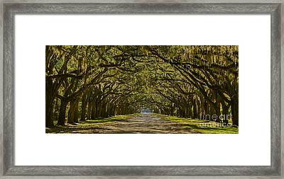 Savannah Wormsloe Plantation Framed Print by Henry Kowalski