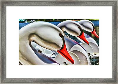 Save A Horse Ride A Swan Lake Eola By Diana Sainz Framed Print by Diana Sainz