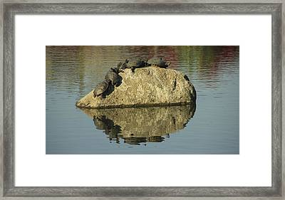Save Room For Me Framed Print