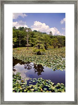 Saw Mill In July Framed Print by Lana Trussell