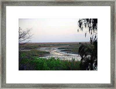 Sawgrass To Horizon  Framed Print by Ken  Collette
