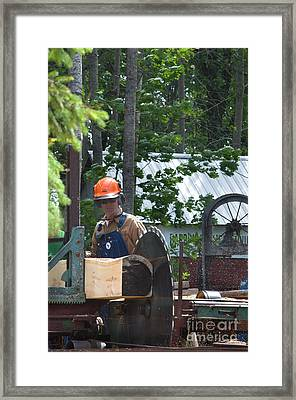 Sawyer Framed Print by The Stone Age