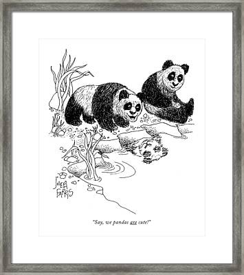 Say, We Pandas Are Cute! Framed Print