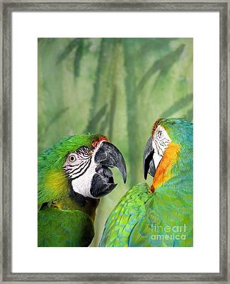 Say What? You Grounded Me For Flirting With Chick Named Daisy? Framed Print by Lingfai Leung