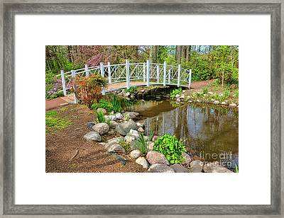 Sayen Foot Bridge Framed Print by Olivier Le Queinec