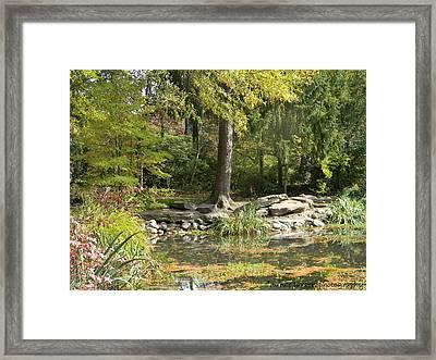Sayen Gardens Pond Framed Print