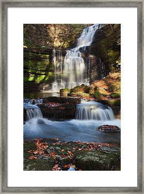 Scalber Force Framed Print