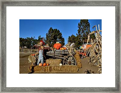Framed Print featuring the photograph Scare Crow by Michael Gordon