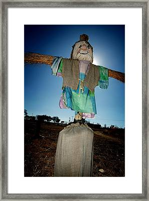 Scarecrow In Filed Framed Print