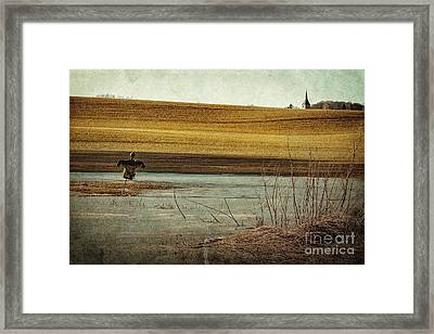 Scarecrow's Realm Framed Print