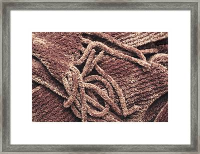 Scarf Close Up Framed Print
