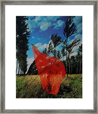Scarf In The Winds Framed Print