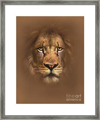 Scarface Lion Framed Print