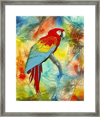 Scarlet Macaw In Abstract Framed Print