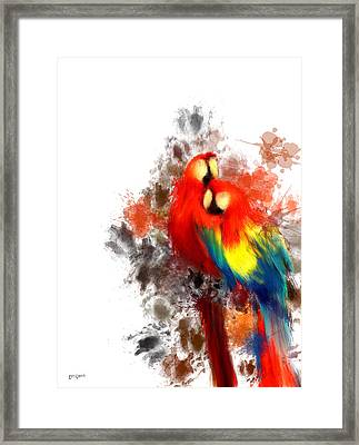 Scarlet Macaw Framed Print by Lourry Legarde