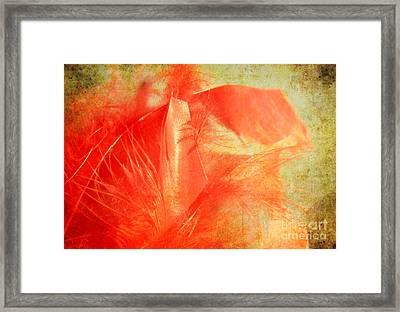 Scarlet On Vintage Framed Print