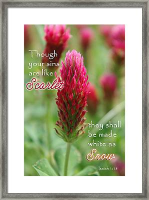 Scarlet Sins Isaiah Framed Print by Robyn Stacey