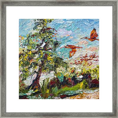Scarlett Ibis Wildlife Tropical Summer Framed Print by Ginette Callaway