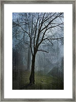 Scars Of Fog Framed Print by Melissa Smith