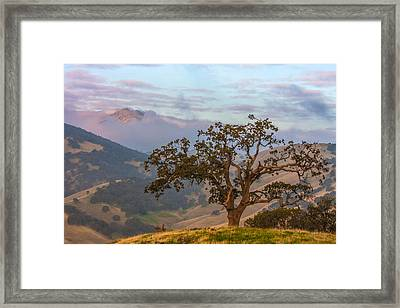 Scattered Clouds At Sunrise Framed Print