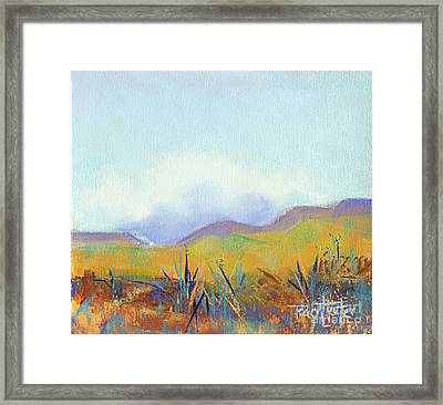 Scattered Seeds Framed Print by Tracy L Teeter