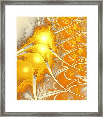 Scattered Sun Framed Print by Anastasiya Malakhova